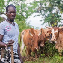 Mekonnen and cows.jpg